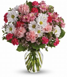 Teleflora's Sweet Tenderness from Swindler and Sons Florists in Wilmington, OH